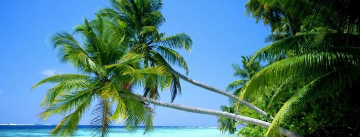 Bãi Dài Phú Quốc – bãi biển hoang sơ nhất Thế giới