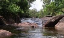 Suối Đá Bàn – Du lịch dã ngoại mùa hè