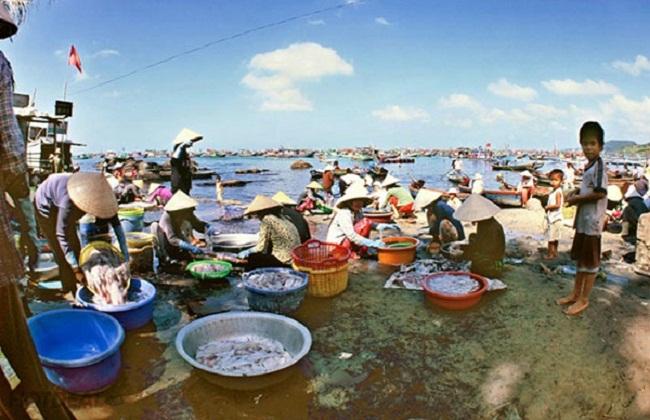 Một buổi sớm thu hoạch tôm cá tại làng chài Hàm Ninh